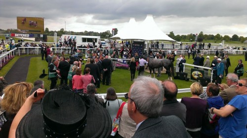 The view of the Parade Ring that the SJA's guests, all members of York Racecourse for the day, got on our Race Day this week. Photograph by Janine Self