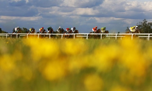 Windsor races in June, and Alan Crowhurst managed to capture something of the beauty of the Sports of Kings with this picture