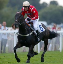 Daily Mail sports writer Marcus Townsend in action on Moon Trip at Windsor on Saturday. Picture by